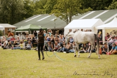 Demo-Lisse 2015-photos by Marieke Bos
