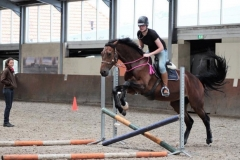 Teaching horsemanship courses