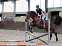 Teaching Horsemanship Courses